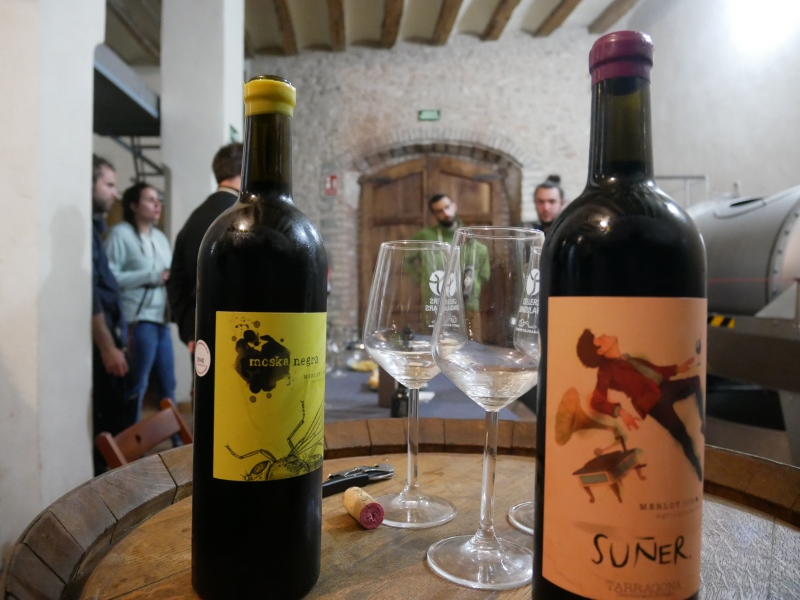 Wine and Kayac con 'Vins i Olis Suñer' (4)