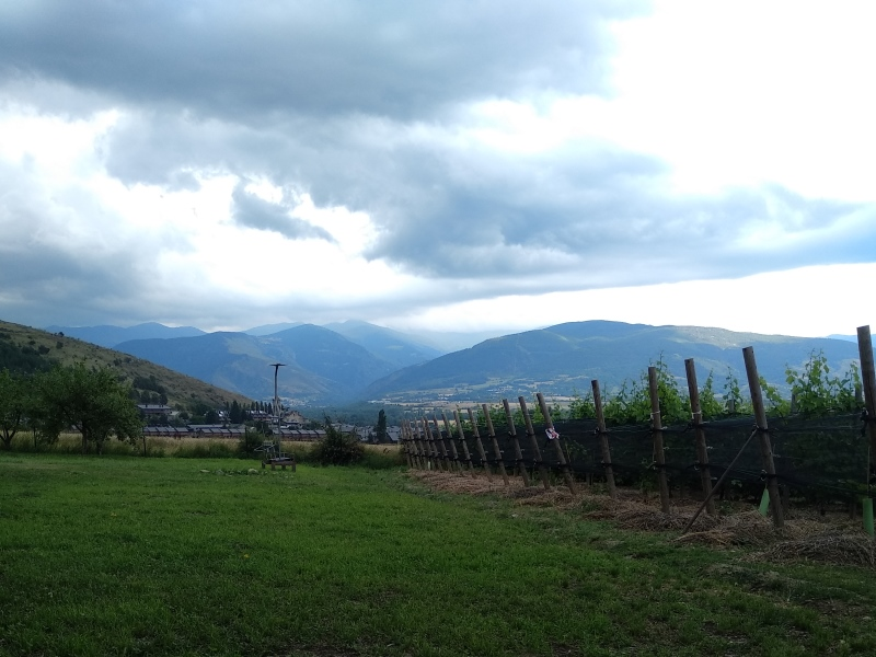 Visita Mountain Wines (4)